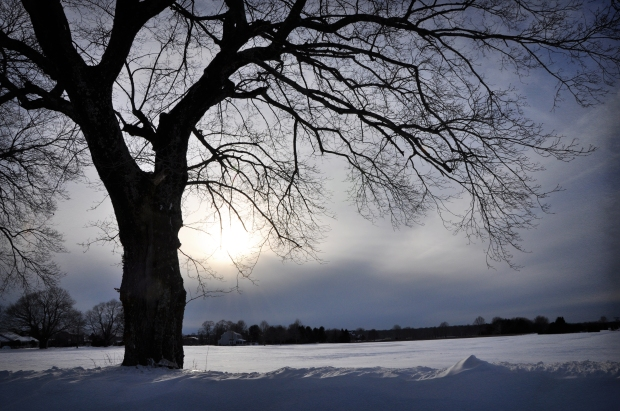 02162014_SnowStorm_17